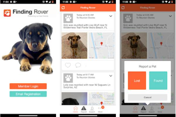 Finding Rover the Facial Recognition App to Find Lost Pets 2021